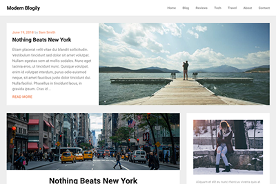 Modern Blogily Free and Premium WordPress Theme