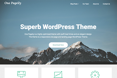 One Pageily A Free WordPress Theme
