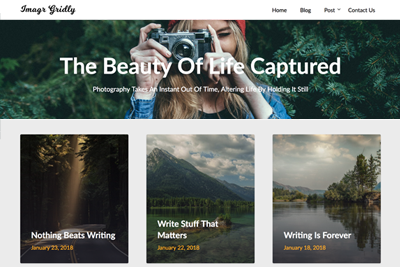 Image Gridly A Free WordPress Theme