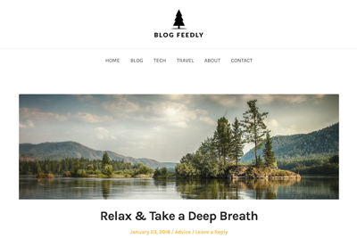 Blog Feedly A Free WordPress Theme